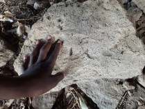 Placing fingers in thousands of years old imprints